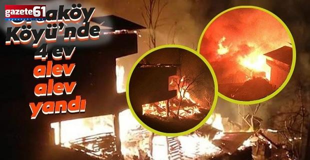 Artvin'de korkutan yangın: 4 ev kül oldu