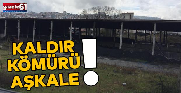 KALDIR KÖMÜRÜ AŞKALE!