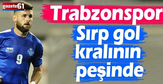 Trabzonspor'a Sırp gol kralının peşinde...