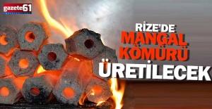 Mangal kömürü üretilecek