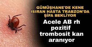 Gümüşhane'de kene ısıran hasta Trabzon'da şifa bekliyor