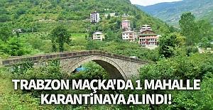 Trabzon'da bir mahalle karantinaya alındı!