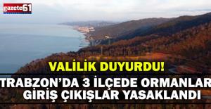 Trabzon' da 3 İlçede Ormanlara Giriş Çıkışlar Yasaklandı